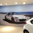 MAZDA-Wall Sticker-2